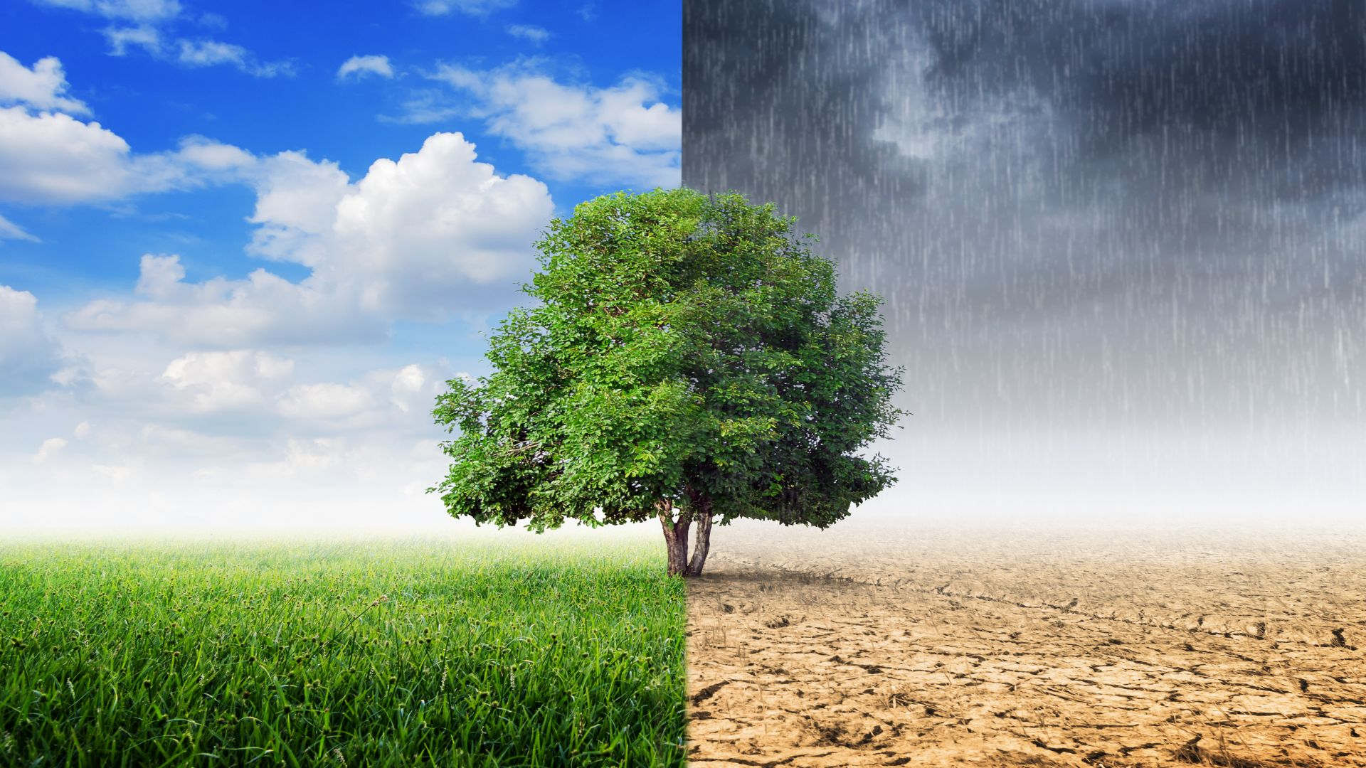 Climate change | Causes, Effects, & Facts