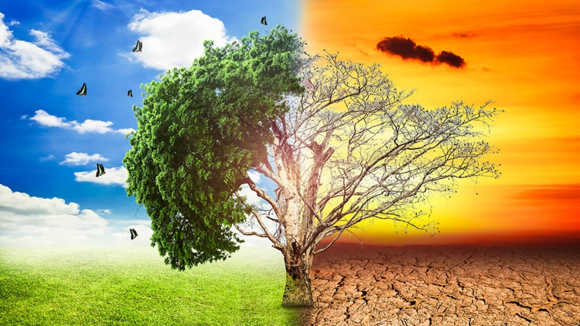 Climate Change: Greatest Threat to Human Health in History?